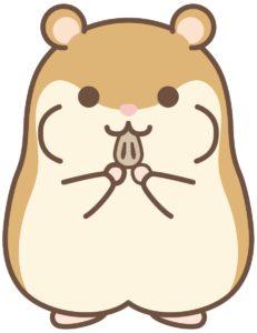 Hamham hamster